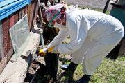 Ликвидация последствий наводнения в барнаульском поселке Ильича (июнь 2014 года)