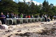 Состоялся самый массовый «выпускной» тюленей