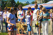 Дог-шоу в Барнауле (июль 2014 год)