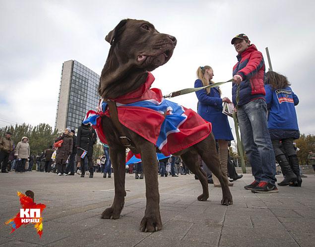 День флага самопровозглашённой Донецкой народной республики отпраздновали порядка 3 тысяч человек