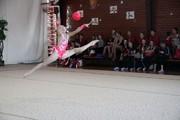 Во Владимире начались Всероссийские соревнования по художественной гимнастике на кубок памяти Николая Толкачёва