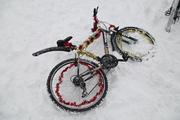 Новогодний велопробег в Воронеже