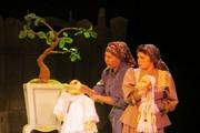 Предпремьерный показ спектакля «Как один мужик двух генералов прокормил» в театре кукол