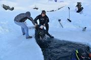 Сибирские дайверы сыграли в поледный хоккей