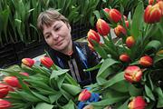 Четверть миллиона тюльпанов вырастили на ВДНХ к празднику