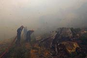 Около 100 пожарных ведут борьбу с огнем в горах в южноафриканском Кейптануне