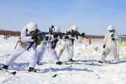 Занятия арктических стрелков под Благовещенском
