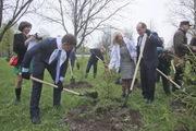 В Петербурге посадили лес Победы