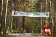 Денис Паслер сажал деревья в парке левоводов России