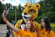 В Москве прошел флэшмоб, посвященный леопарду