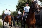 Краснодарская конная полиция