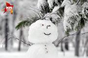 Картинки дня: 25 ноября 2015, пригород Новосибирска занесло снегом
