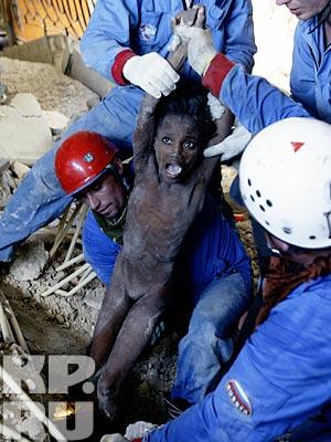 Боль Гаити