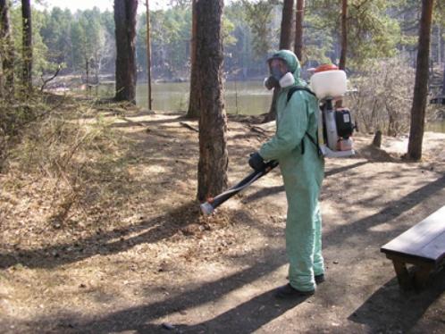 От укусов клещей ежегодно погибают сотни людей и тысячи животных.