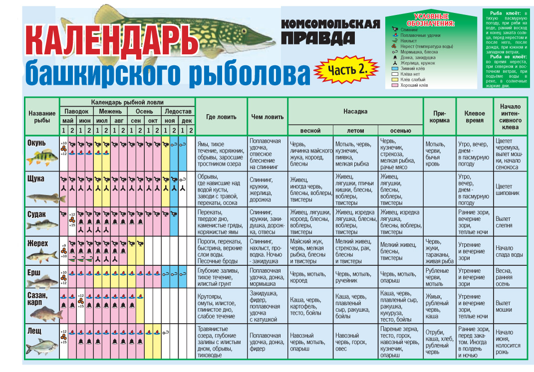 Прогноз клёва по регионам России