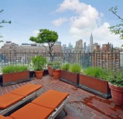 Вид на Нью-Йорк из квартиры актрисы потрясающий.