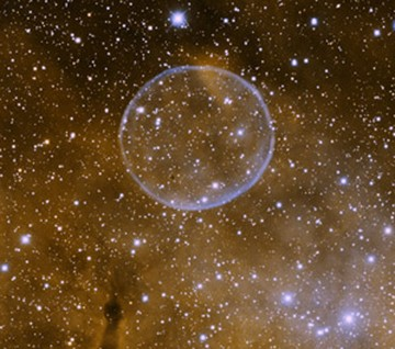 Не исключено, что аузырь повис во Вселенной в честь Перельмана
