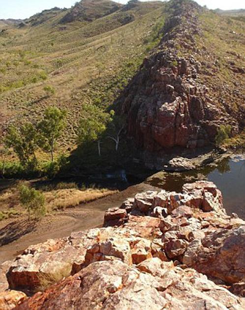 Здесь - в отдаленном уголке Австралии - были обнаружены предки всех живых существ на Земле