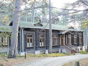 Сборную конструкцию для этого «сталинского домика» везли из Москвы