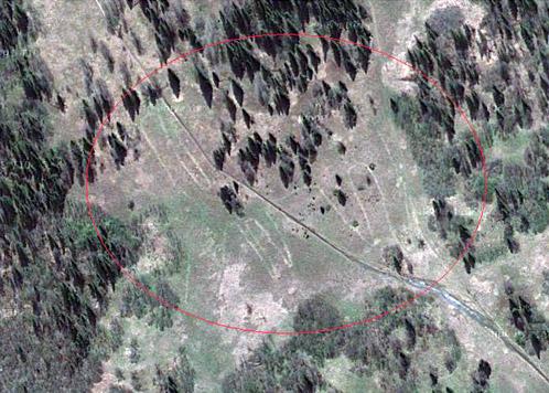 Изображение лося на картах Google.