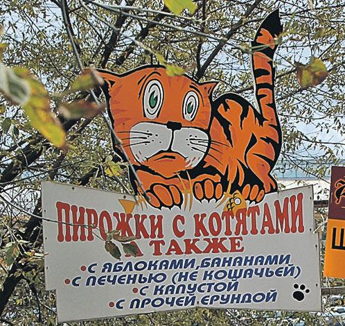 Анна Григорьева из Архангельска приметила эту вывеску, когда гостила во Владивостоке. А вот кошек там же, в районе рынка, совсем не приметила...