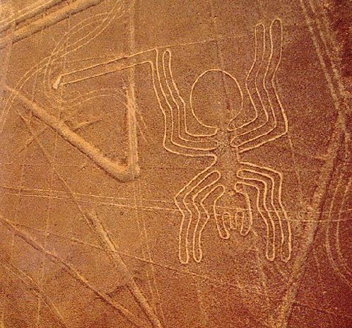Паук в пустыне Наска.