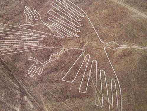Кондор в пустыне Наска.