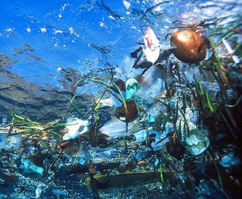 Человечесто уже сильно изгадило Мировой океан
