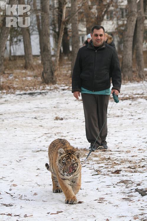 Карен Даллакян спас Жорика от страшной смерти.