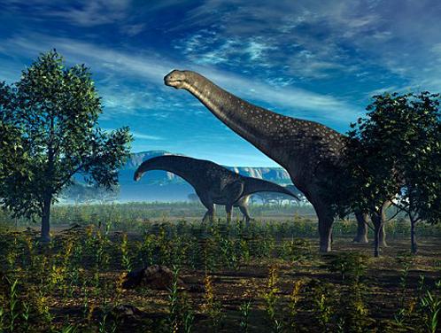 Титанозаврам, жившим 70 миллионов лет назад, было тепло в Антарктиде