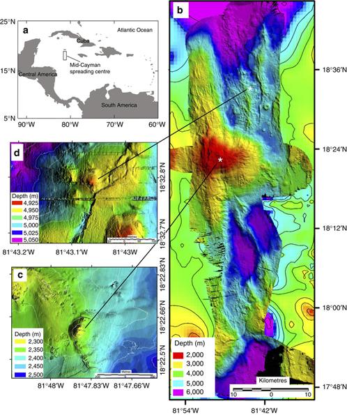 Термостойкие креветки обнаружены в Карибском море