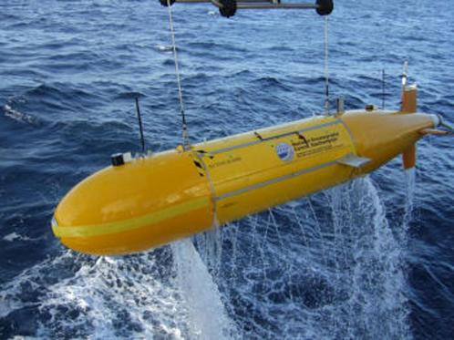 Креветок искали с помощью подводной лодки-робота