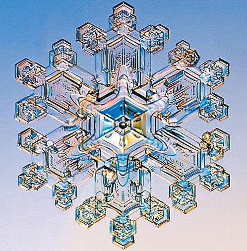 Звездный дендрит (от греческого - дерево) имеет древовидную ветвящуюся структуру. Довольно крупный кристалл - 2 - 4 мм в диаметре. Легко увидеть невооруженным глазом.
