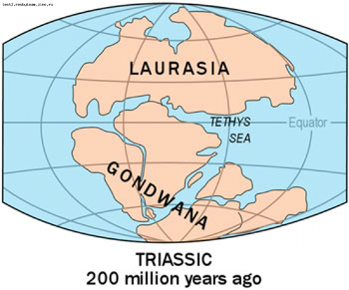 Суперконтинент Пангея распался сначала на Лавразию и Гондвану