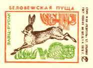 ...а в 1975 году заяц-русак оказался на спичечной этикетке.