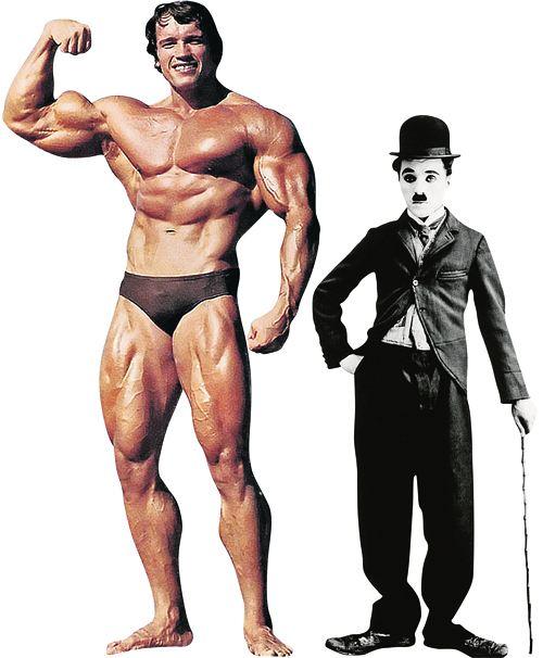 Арнольд Шварценеггер - 188 см, вес - 105 кг. Чарли Чаплин - 165 см, вес - 60 кг.