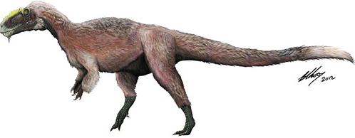 Тиранозавр пушистой породы - самый крупный из всех до сих пор найденных. Прежде с перьями попадались особи в 40 раз мельче
