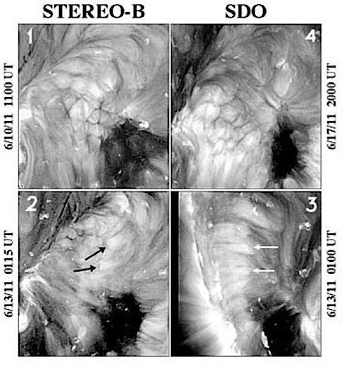 Корональные ячейки на изображениях STEREO (слева) и SDO (справа).