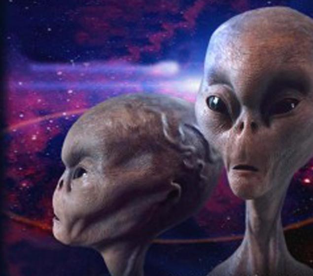 Так инопланетян принято изображать на Земле. Сходство с теми, что прилетали в Турцию, очевидно.