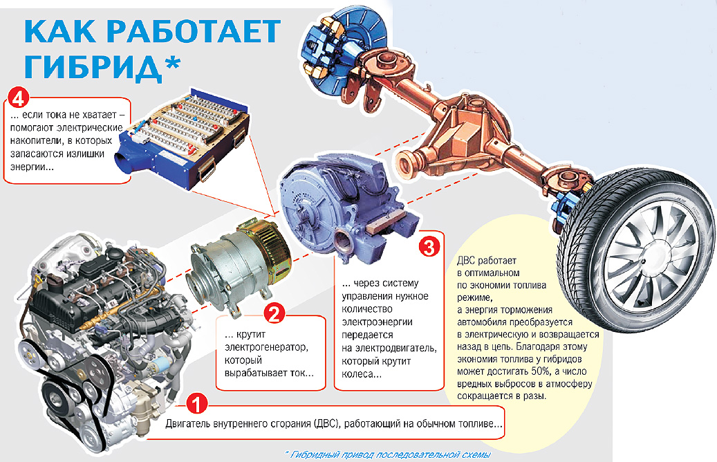 Инфографика Катерины