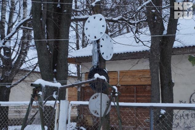 Неподалеку от обувного столба стоит дерево с автомобильными дисками.
