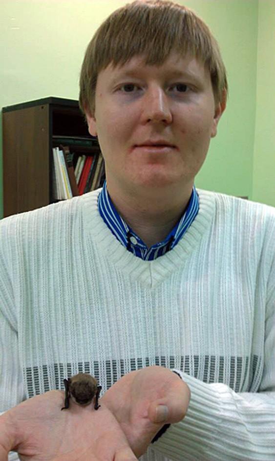 Алексей Москалев с ночницей-долгожительницей