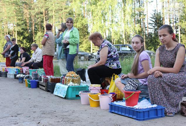 Продавцы утверждают, что собирают ягоду руками, а не чесалкой-комбайном