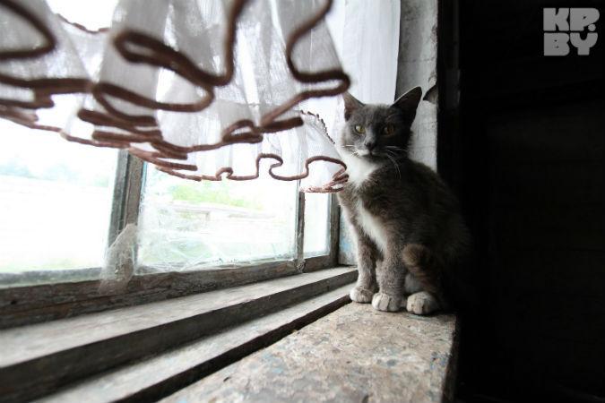 Светлана боится лютой зимы - вместо окон целлофан