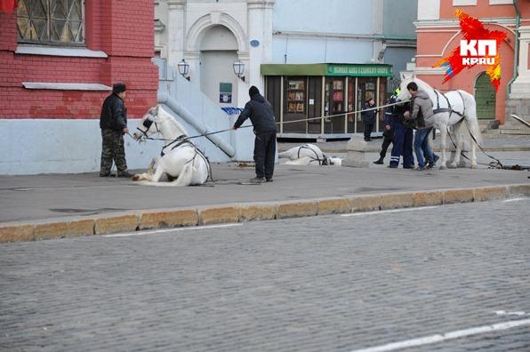 Наездники пытались остановить лошадей до последнего момента и спрыгнули за секунду до столкновения