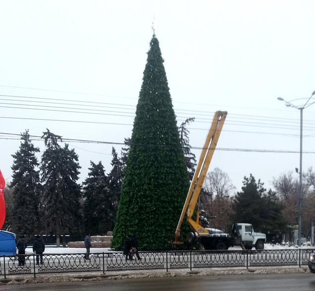 Главная елка - 20 метров высотой!