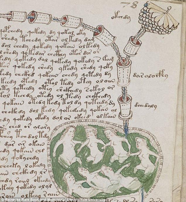 В манускрипте полно странных сюжетов