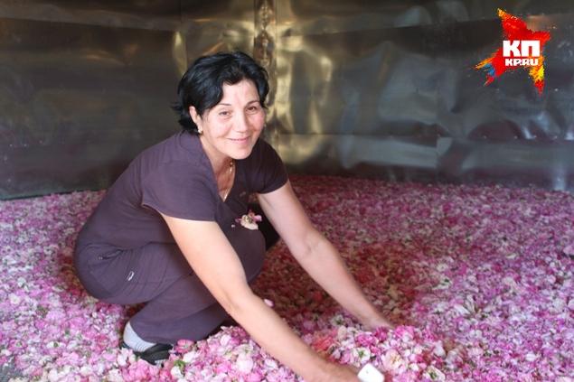 Эсма Халилова улыбается на камеру, но говорит грустные вещи: тонны чабреца, лепестков роз и других лекарственных трав пропадут, если не найти новые рынки сбыта