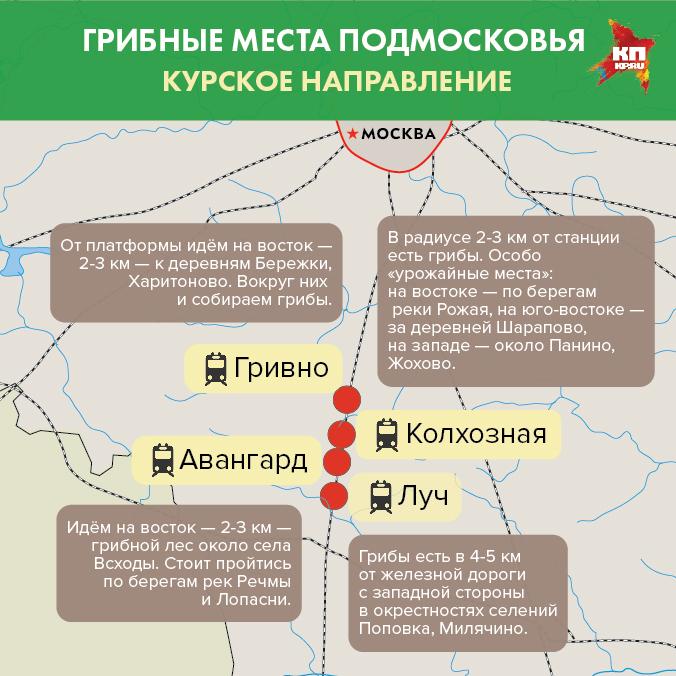 Вдоль железной дороги Курского