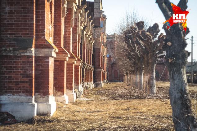 Рязанская область лишится одного из своих символов - Старожиловского конезавода?